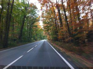 road-253653_1920